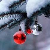 Що подарувати в новий рік 2010? Подарунки за знаками зодіаку