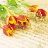 Як зберегти зрізані квіти свіжими?