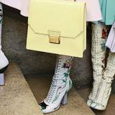 Модні чоботи весна 2014
