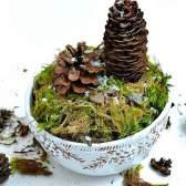 Вироби з природного матеріалу: міні-ліс своїми руками