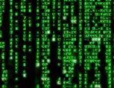 День програміста 2010