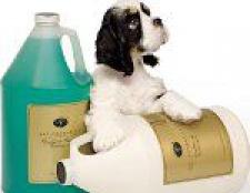 Косметика для собак: як вибрати?